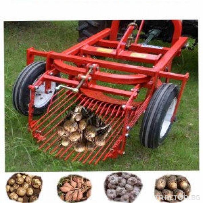 Машини за зеленчуци Картофовадач едно-редов вибрационен 6 - Трактор БГ